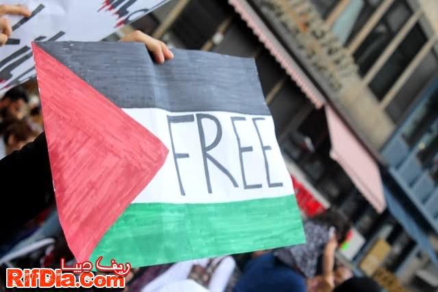 ألمانيا فلسطين (12)