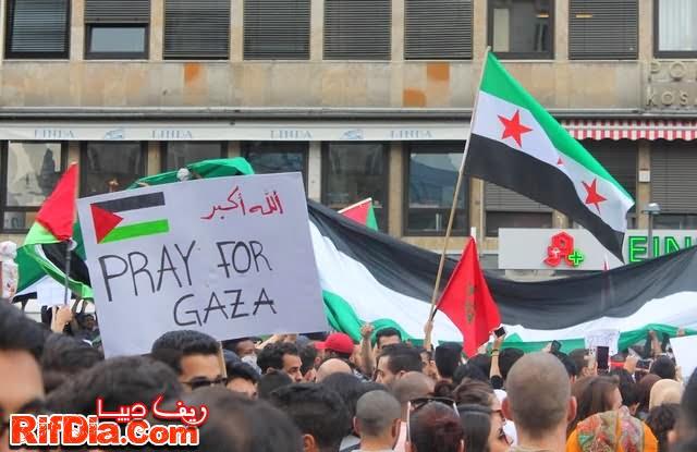 ألمانيا فلسطين (15)