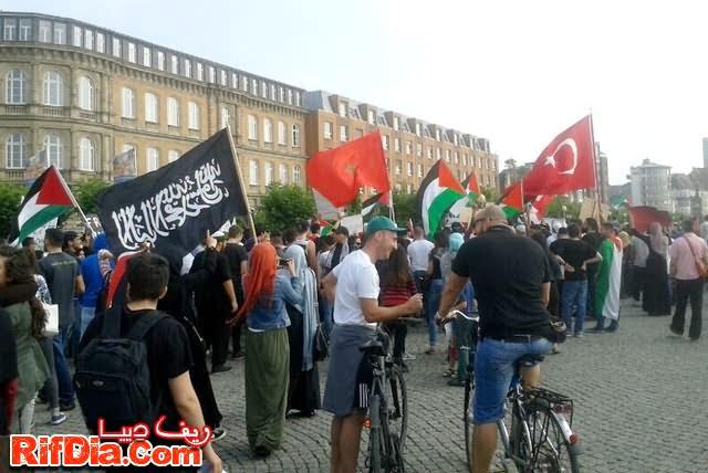 ألمانيا فلسطين (5)