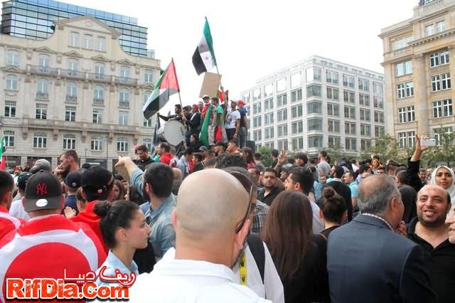 ألمانيا فلسطين (8)
